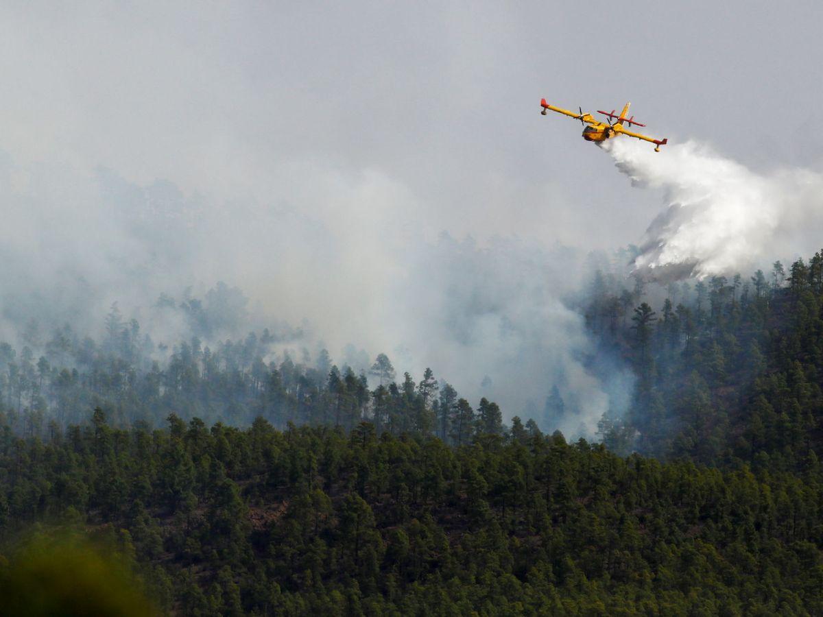 Foto: Un incendio en Tenerife en mayo (Reuters)