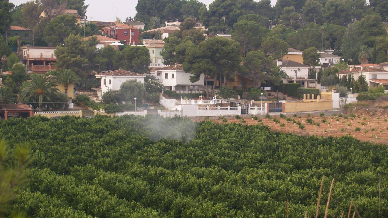 Aplicación de pesticidas en un naranjal de Valencia. (APIADS)