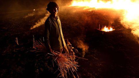 Urdangarin recibe la orden de prisión y suicidios de agricultores por la sequía: el día en fotos