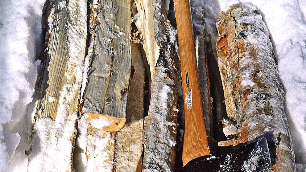 'El libro de la madera', el insólito superventas que arrasa en todo el mundo
