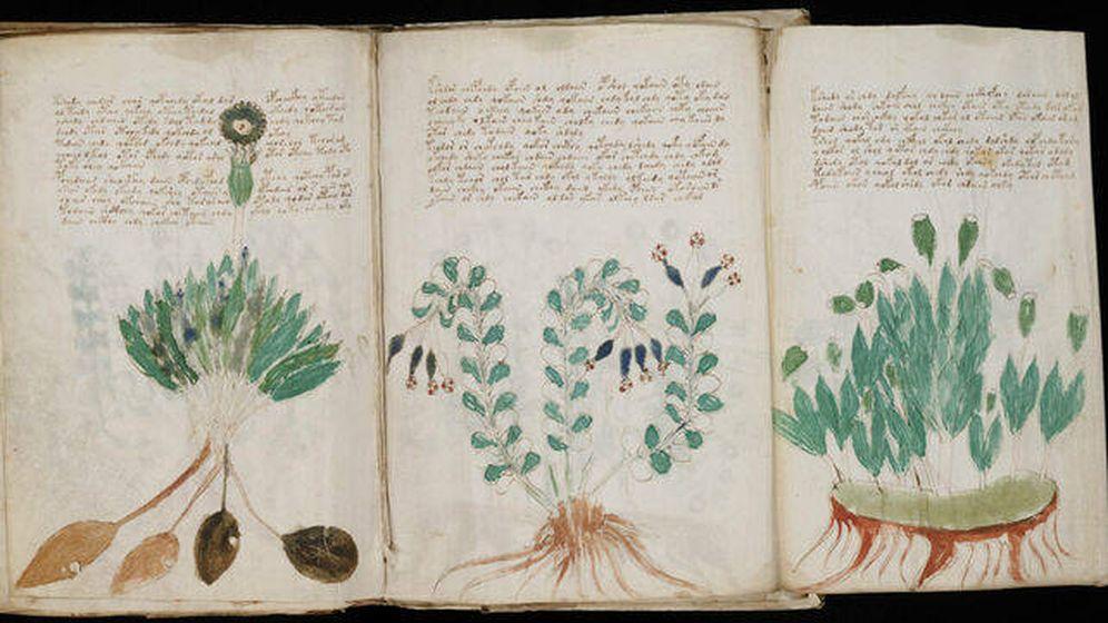 Foto: El (por ahora) indescifrable manuscrito.