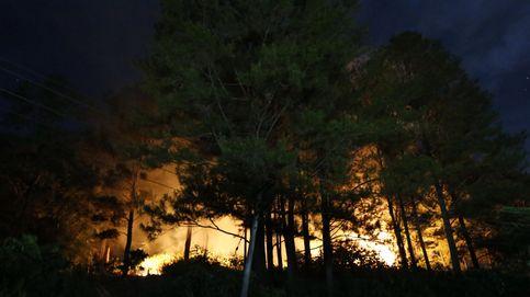 Un incendio quema el Bosque de las cien acres, donde 'vive' Winnie the Pooh