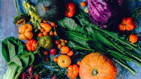 La verdad de cómo la dieta nos protege de las infecciones