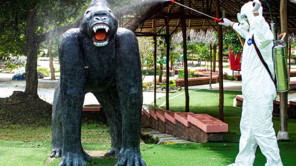 Foto: Desinfección en un parque de Indonesia. (Reuters)