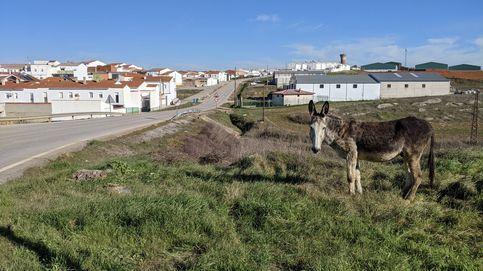 El epicentro de la 3ª ola de covid-19 son estos pueblos de Badajoz. ¿Cómo ha podido pasar?