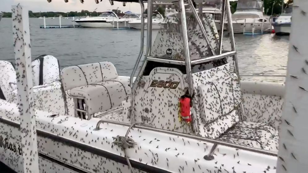 Foto: Las ciudades más cercanas al lago Erie han sido las más afectadas (Reuters/James C Dubbert)
