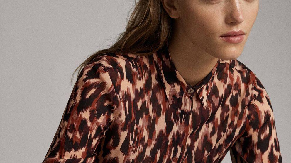 Cinco camisas de Massimo Dutti, recién llegadas a tienda, para triunfar todos los días en la 'ofi'