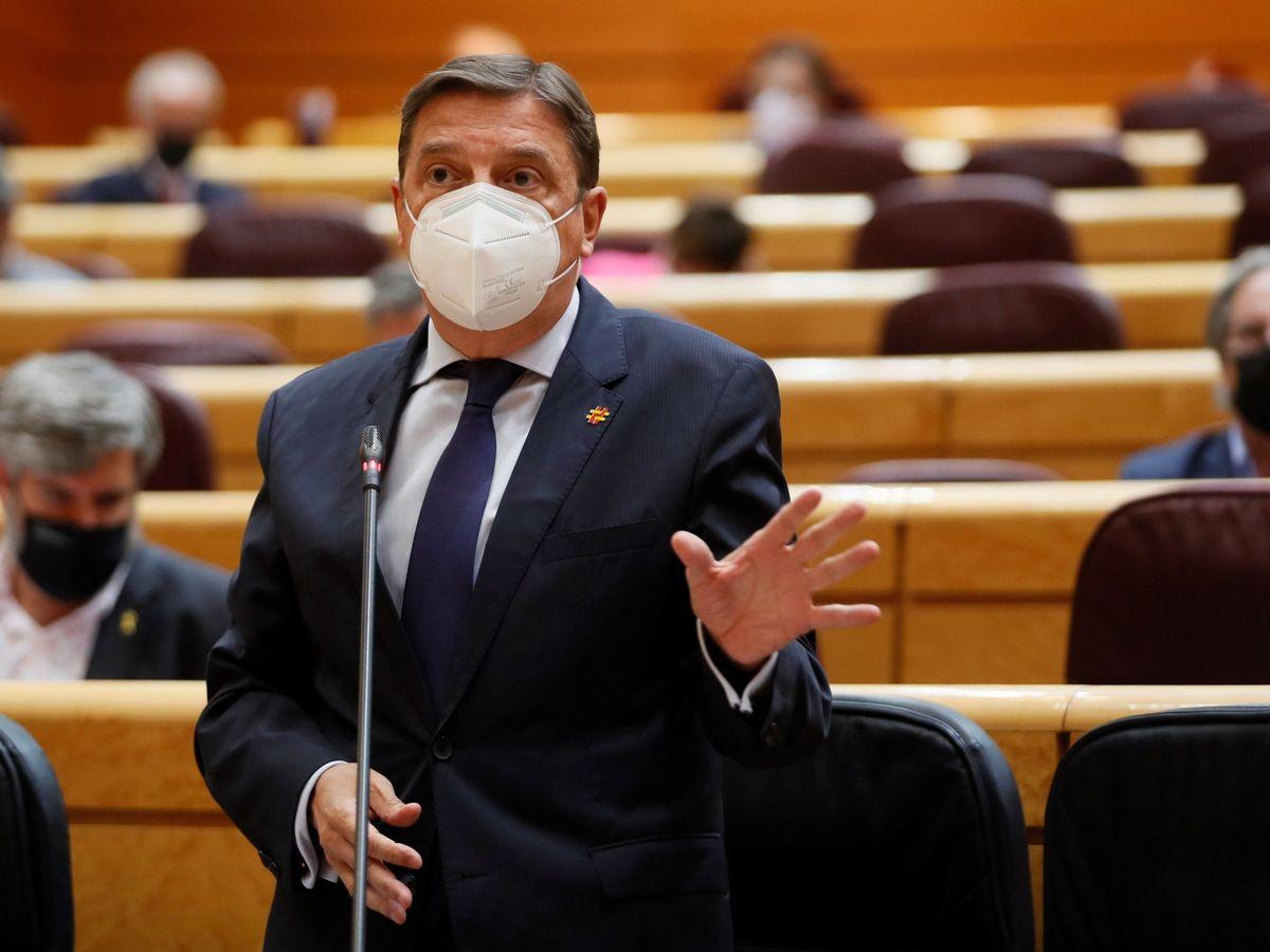 Foto: El ministro de Agricultura, Pesca y Alimentación, Luis Planas. (EFE)
