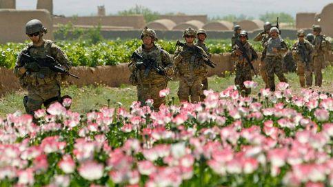 La guerra de las amapolas: el fracaso de EEUU en Afganistán que aupó a los talibanes