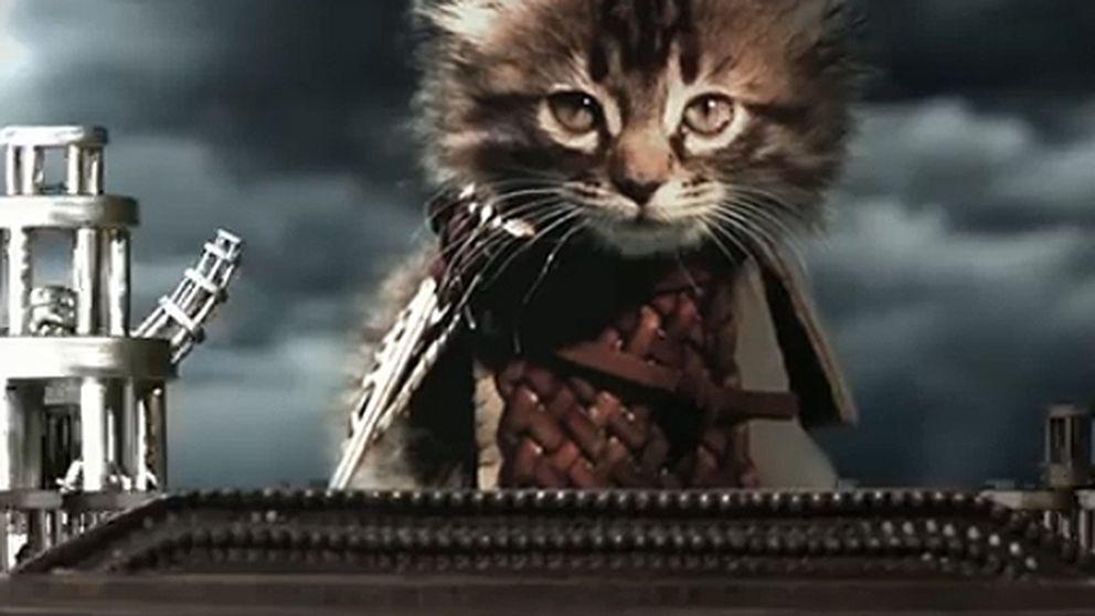 'Juego de Maullidos': la versión felina los reinos de Poniente