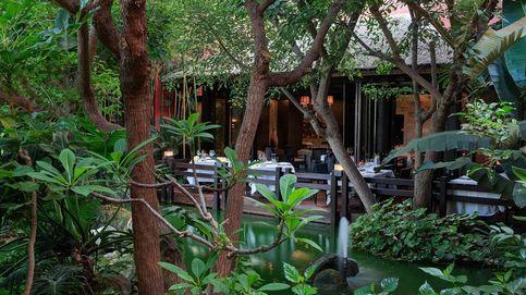 Hoteles que reabren con espacios gastronómicos de lujo