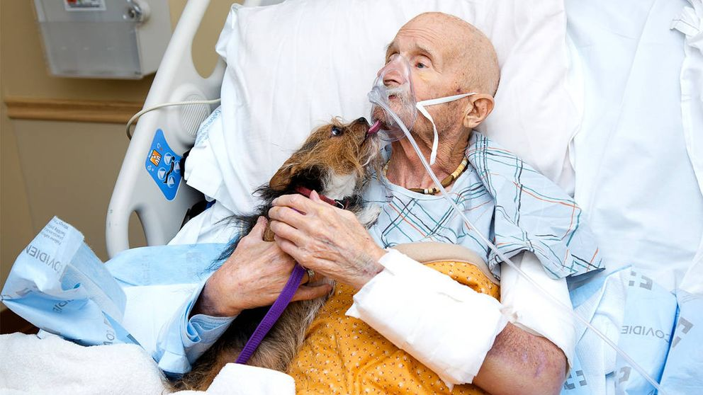Un veterano en paliativos cumple su último deseo: despedirse de su perro