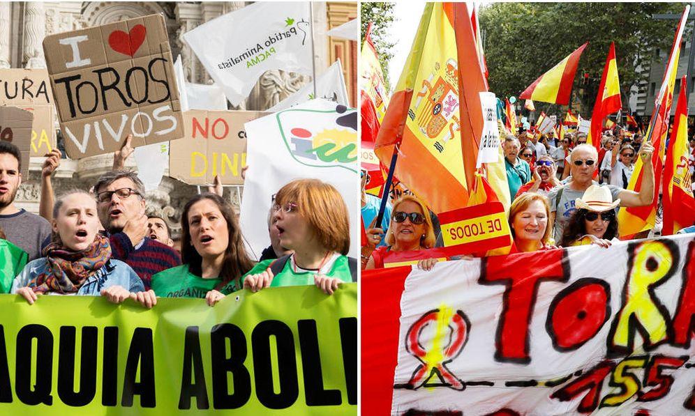 Foto: Vox y Pacma irrumpen en las encuestas desde espectros opuestos. (EFE)