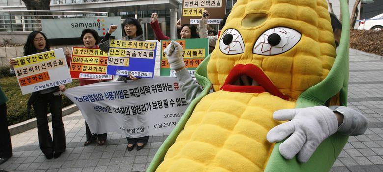 Foto: Un grupo de ecologistas protestan en contra del maíz transgénico, en Seul. (Reuters)