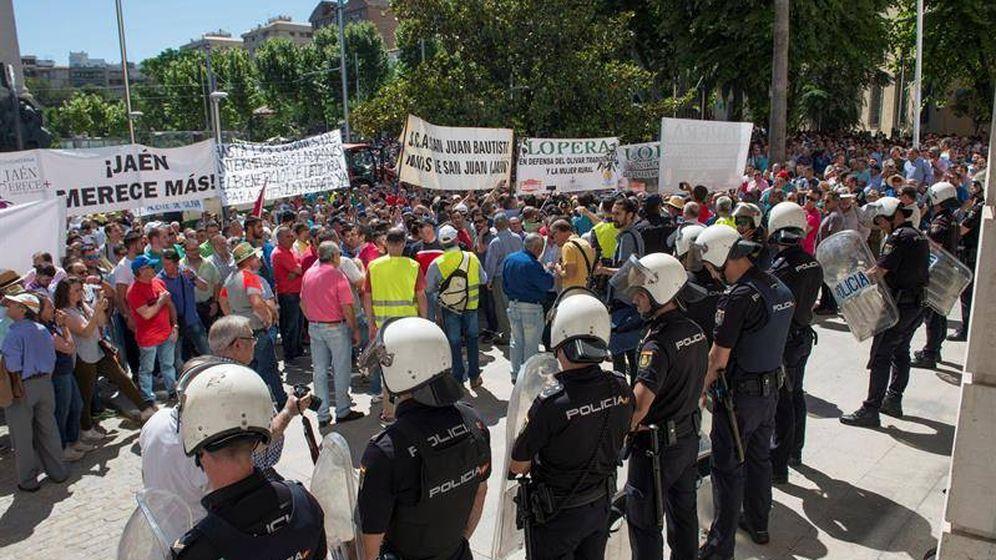 Foto: Protesta en Jaén por el desplome del precio del aceite. (EFE)