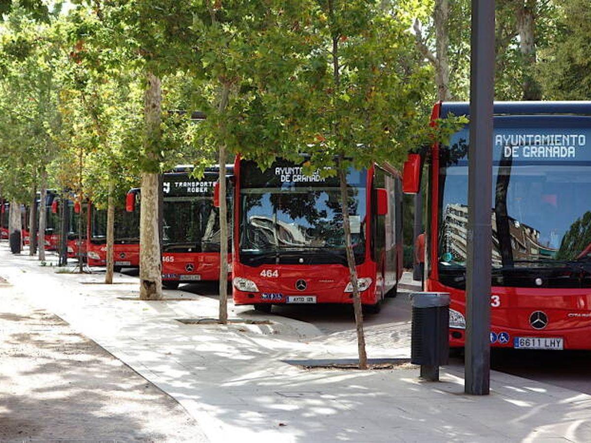 Foto: Autobuses de la empresa Rober.