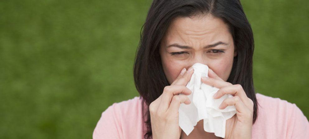 Foto: Los siete alimentos más efectivos para aliviar los síntomas alérgicos