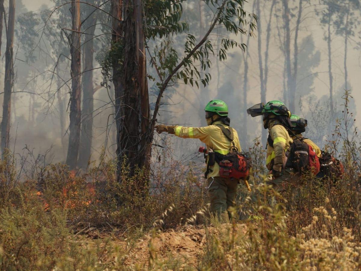 Foto: Bomberos enfrentando a las llamas. (EFE)