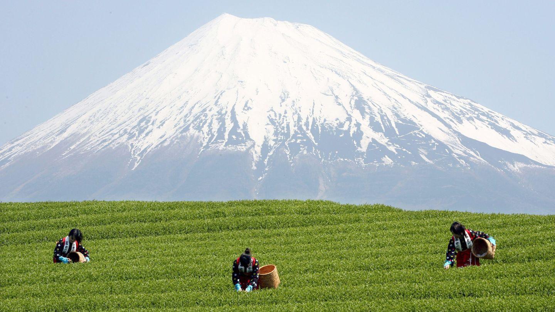 El Monte Fuji. (Reuters)