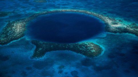 Ballenas y terremotos: lo que se escucha en el lugar más profundo del océano