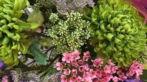 ¿Y si este Black Friday regalas flores? Descuentos deco que no puedes dejar pasar