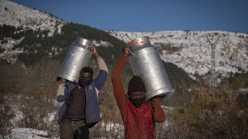 Cargando leche por los montes nevados: el temporal pone en jaque al mundo rural