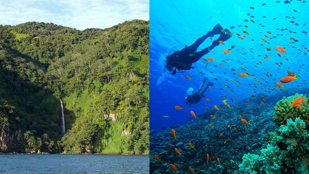 Del Mar Rojo a Roatán: cinco mecas para practicar submarinismo este otoño