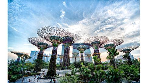 Los 8 jardines verticales más espectaculares del mundo