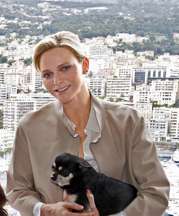 Foto: Charlène con su perro Monte (Gtres)