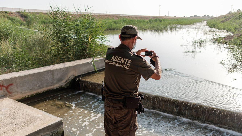 Foto: Un agente medioambiental toma una fotografía a la Rambla del Albujón. (S.B.)