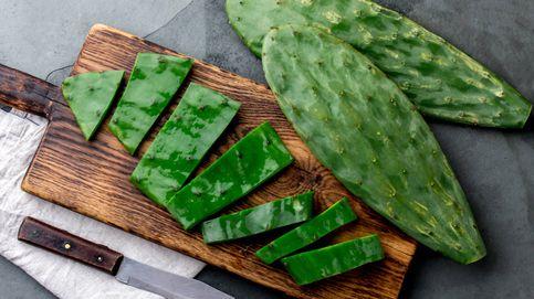 Lo que el cactus en la cocina puede hacer por tu salud