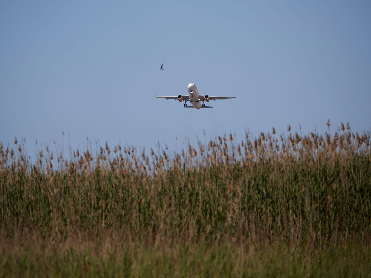 Foto: La ampliación del aeropuerto amenazaba las reservas del Delta del Llobregat. (EFE)