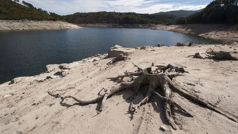 Cinco problemas ambientales urgentes de los que el tema catalán nos distrae