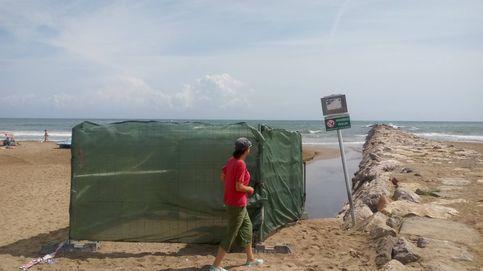 La picaresca valenciana: bombeaban cloro en las playas para ocultar la contaminación fecal