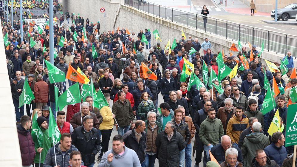Foto: Protesta de agricultores en Salamanca. (EFE)