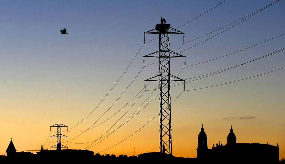 Foto: Tendido eléctrico en Navarra. (EFE)