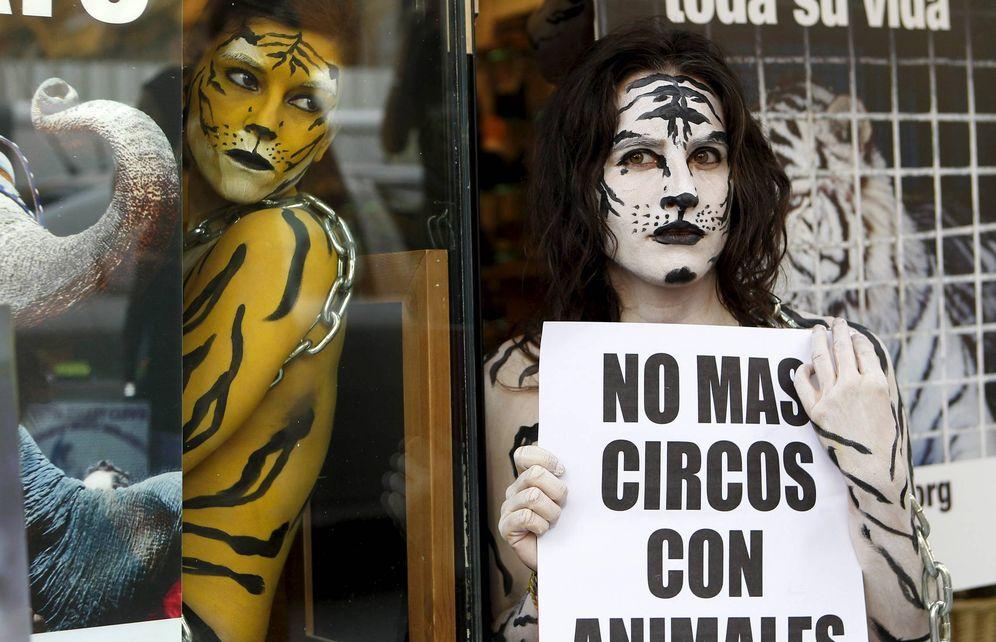 Foto: Protesta en Madrid contra los circos con animales salvajes