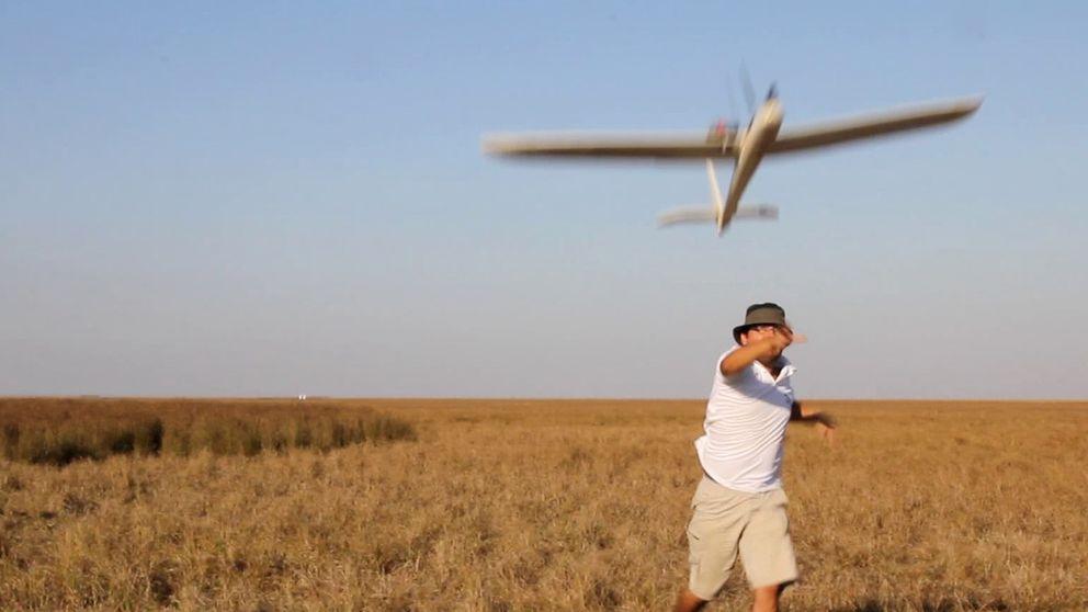 Los ecologistas denunciarán a Bruselas el aeródromo en Doñana