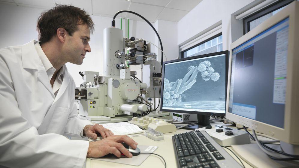 Foto: Investigador trabajando ante células cancerosas. Foto: EFE BAYER