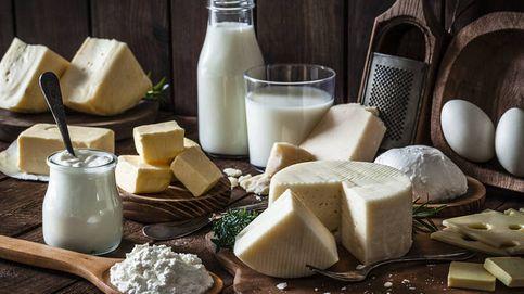 Manual del lácteo: propiedades, beneficios y consumo