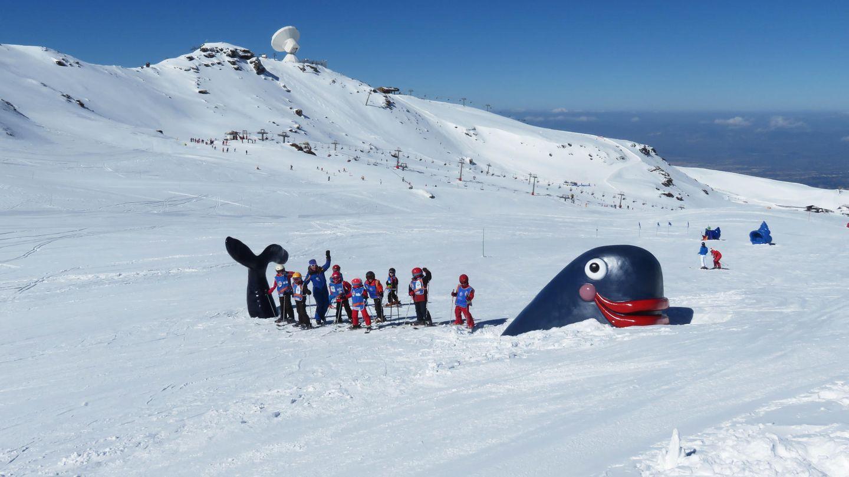 Si vas a Sierra Nevada te encontrarás con este pulpo en mitad de la nieve (Foto: Sierra Nevada)