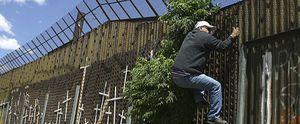 Arizona responde al boicot económico de Los Ángeles con cortes en el suministro eléctrico