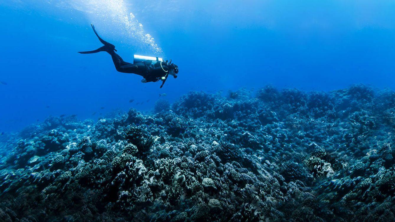 Esto es lo peor que han visto los submarinistas cuando estaban buceando