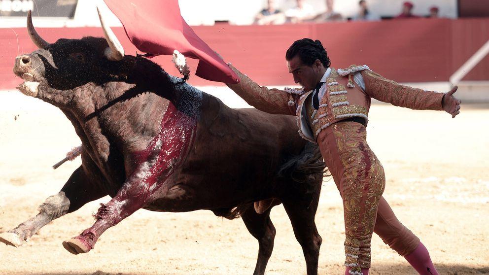 Muere el torero Iván Fandiño: una carrera de esfuerzo y tesón en imágenes