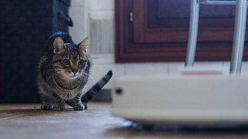 La Roomba china que logró ser tan silenciosa como para no desquiciar a mi gato