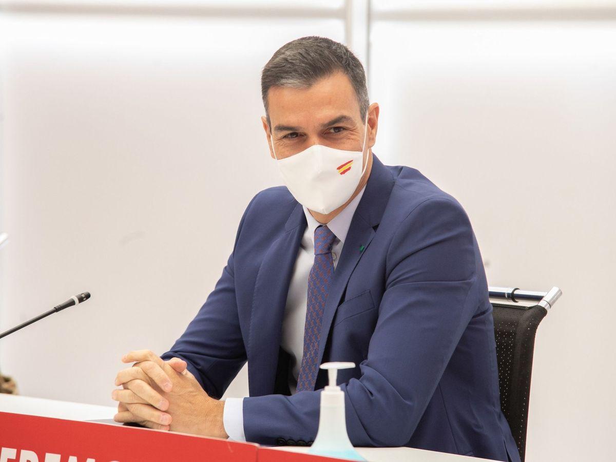 Foto: Pedro Sánchez, en una reunión de la ejecutiva federal del PSOE. (EFE)