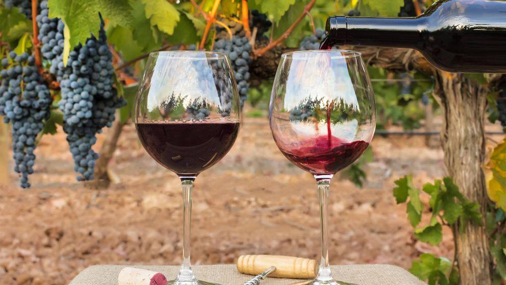 Lo que no sabías del vino y su filtrado: no hay copa sin arsénico