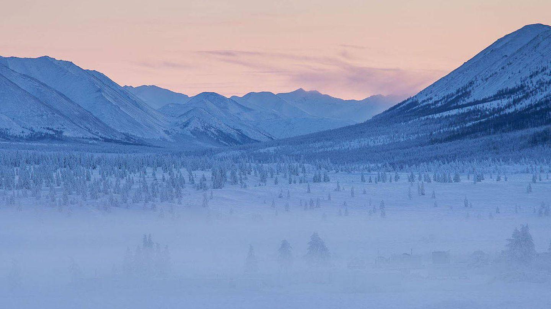 Así son los bosques de Oymyakon en invierno. (Foto: CC)