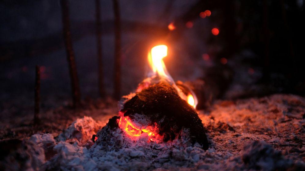 Foto: Los incendios que asolan el Amazonas, el mayor bosque del planeta, tardará semanas en apagarse (Reuters/Lucas Landau)