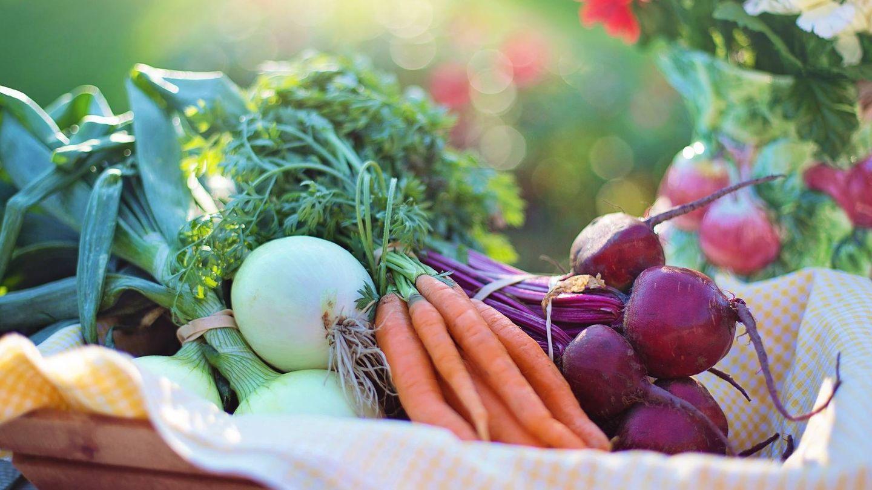 Al parecer, las verduras no pierden demasiadas propiedades cuando se trocean.